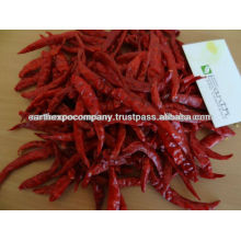 S4 Chilli Exporter From India