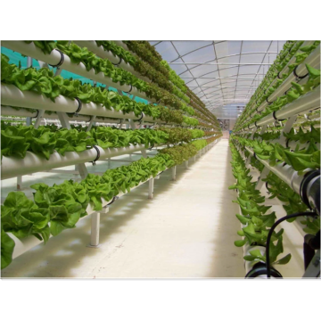 Agricultural Hydroponic NFT Planting Growing System