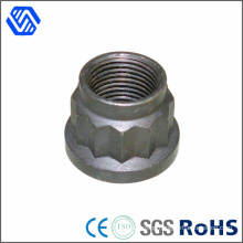 Carbon Steel High Quality Zinc Plated 12 Point Nut