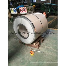 PPGI avec le paquet de valeur d'exportation de la fabrication directe