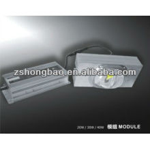 30w LED module for street light,brigelux LED chip and Meanwell power supply