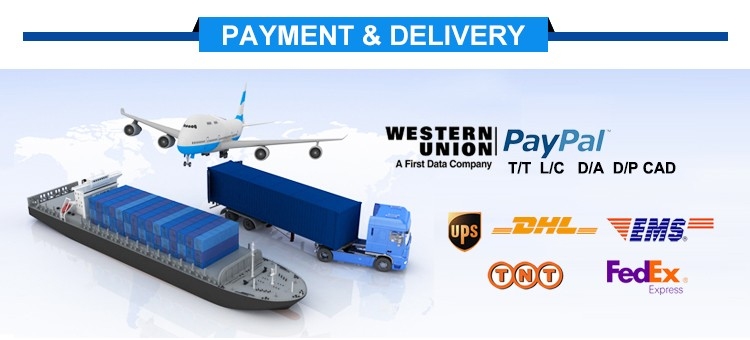9 Payment Delivery