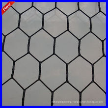 DM stainless steel hexagonal wire netting