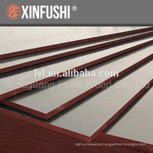 15/18mm Film faced plywood for African market made in China