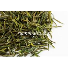 Grüner Tee lässt Tee trinken