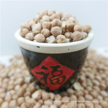 best quality chickpea market price HPS chick pea beans