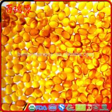 Высокое качество ягоды годжи масло годжи масло ягод годжи масло полезно для здоровья