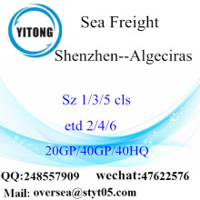 Shenzhen Port Sea Freight Shipping To Algeciras