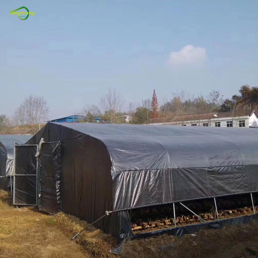 Black Transparent Greenhouse Cover