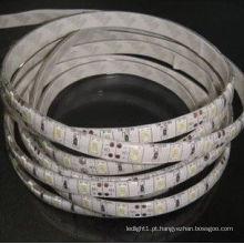 Nova tira de luz de LED IP65 SMD 5630 de 144 watts em branco quente e branco frio