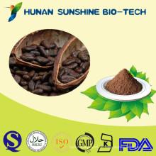 Hoher Standard alkalisiertes Kakaopulver Chocholate / trinkender unentbehrlicher Bestandteil