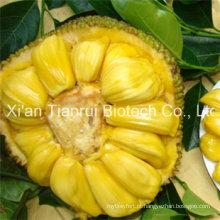 Jackfruit Pó / Jackfruit suco em pó / Jackfruit extrato em pó