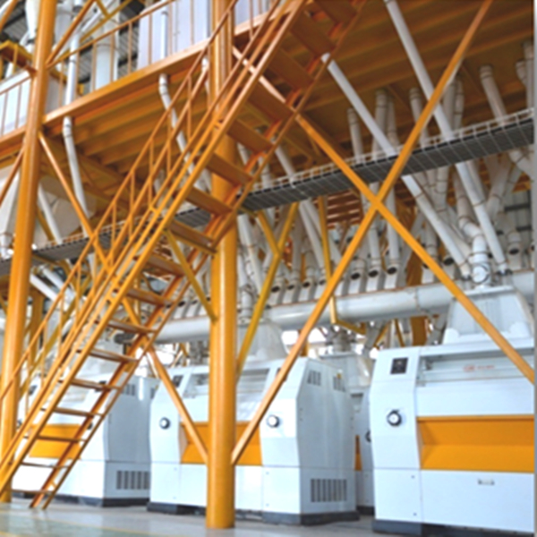 Angola 120T Maize Milling Plant
