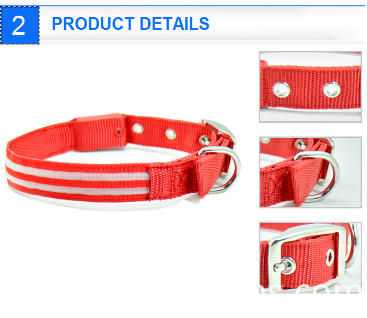 Lighted Dog Collar And Leash