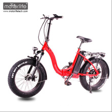 2017 Morden design 48V1000W 20inch fat tire electric bicycle made in china for sale foldable e-bike