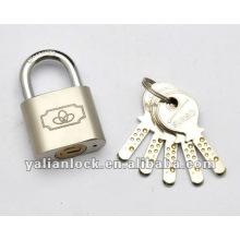Компьютерный ключ безопасности замка