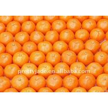 Chinesisch Baby Mandarin orange