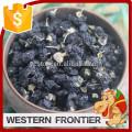 Haute qualité et peu coûteux séchés Black Black Goji Berry