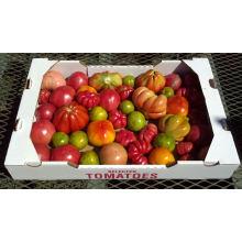 Caixa ondulada da caixa ondulada feita sob encomenda da caixa da fruta do logotipo