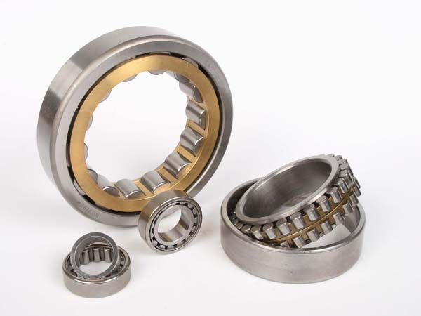 Roller Bearings N300 Series