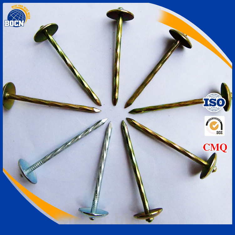 best price umbrella head twisted smooth shank roofing nail