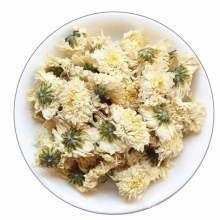 Factory Price  Chrysanthemum Tea Chrysanthemum Seeds