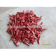 Verkaufen Getrocknet (trocken), frisch, gefroren, Pulver, Paste von CHILLI