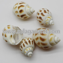 28-38MM perfurado tigre marrom Shell Shell Natural grânulos