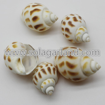 28-38MM forato marrone tigre perle perline guscio naturale