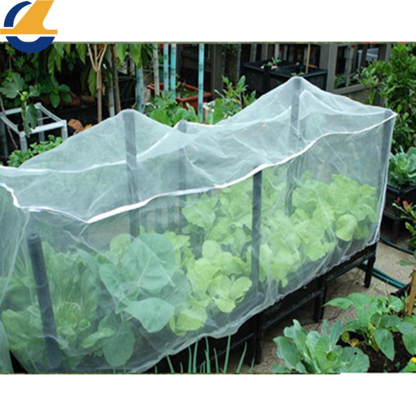 mesh net for plants