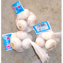 Mesh Packing Normal White Garlic (5.0CM UP)