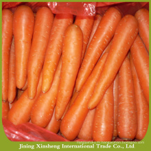 Prix de la carotte
