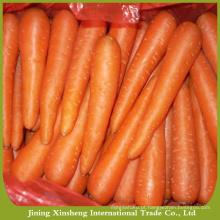 Preço da cenoura