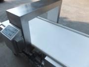 Metal Detector for Frozen Food