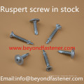 Ruspert Screw Self Tapping Screw EPDM Bond Washer 3.0*19