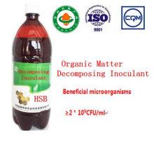 Inoculante de materia orgánica de fermentación microbiana de algas marinas