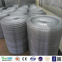 Galvanized Welded Bird Aviary Wire Mesh