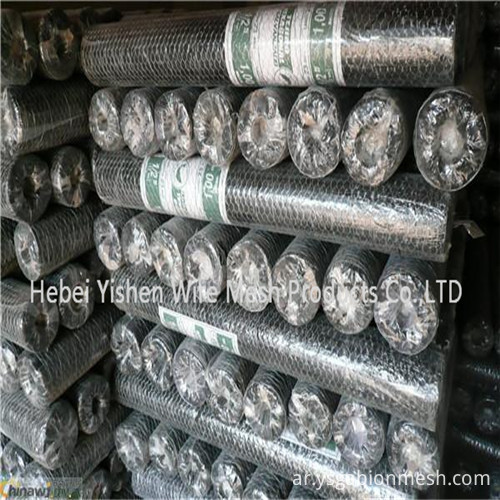 Hexagonal wire netting6