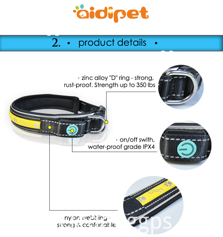Illuminated Led Dog Collars