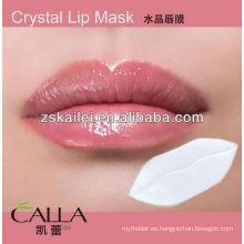 Parche labial de cristal caliente 2014
