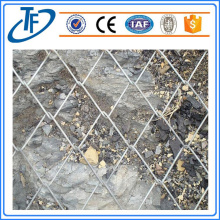 High Quality Fence Notting / Wire Mesh / rantai Link Fence