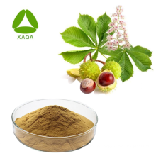 Horse Chestnut Seed Extract For Aesculin and Esculin
