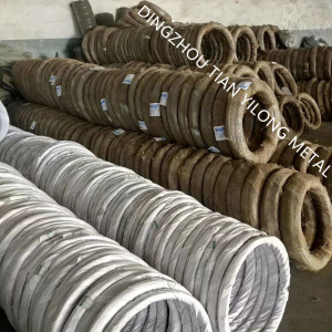BWG20 GI Wire 1Kg Coil