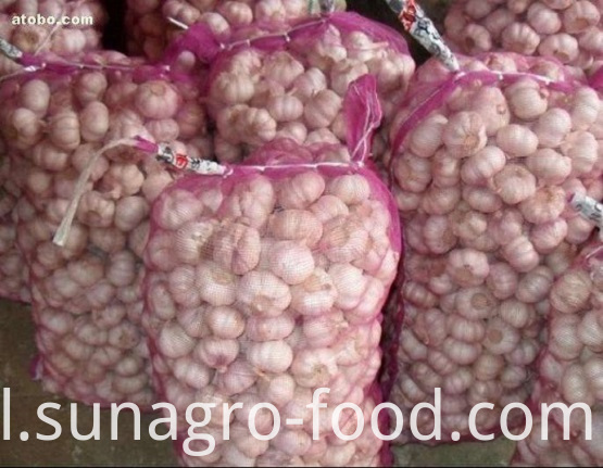 50kgThe bags of garlic