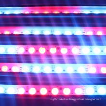 Iluminación arquitectónica IP68 a prueba de agua cambio de color mágico led barra de arandela de la pared 24 w