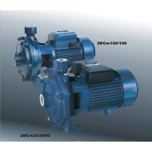 Micro Centrifugal Pump (2DCm25/160A, 2DCm25/130)