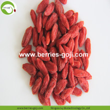 Offerta di prodotti alimentari Super Food Offer Goji Berry