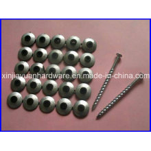 HDG Roofing Screws with Neoprene Washer for Sale