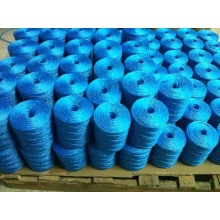 Hot Sale Fibrillated Agriculture String PP Twine