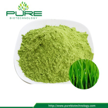 Instant Wheatgrass Juice Powder Good Water Soluble